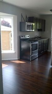 Newly renovated upper level apartment for rent