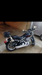 Harley Davidson Pipes