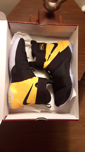 LeBron Soldier 10 SFG (Worn Once Inside)