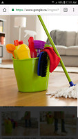 Cleaning lady available for Brampton East