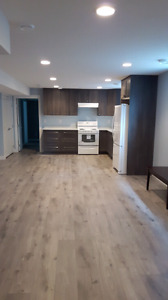 1 brand new bedroom basement available now in College Heights