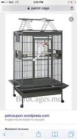 ISO parrot cage