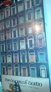 THE DOORS OF DUBLIN  3D WOOD PICTURE