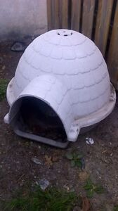 Dog house (fits large dogs)