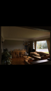 Summer Sublet (490 a Room) 1655 McRae Ave