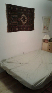 1 bedroom for rent in shared apartment