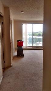 1 Bedroom Apartment on Kipps Lane and Adelaide London Ontario image 1