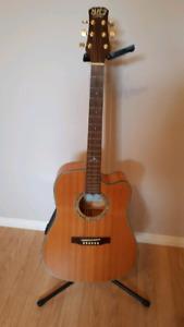 Guitare acoustique NJR