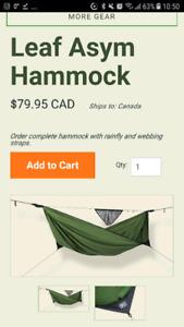 Leaf Hammock, plus bug net, plus Grand Trunk additional straps.
