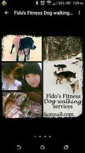 Fido's Fitness Dog walking service