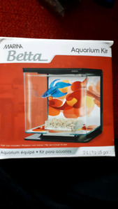 Kit aquarium betta