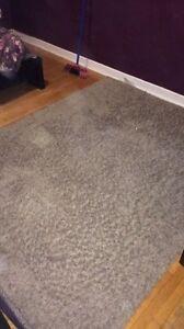 Area rug greyish brown