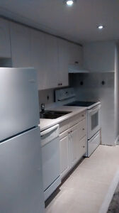 One Bedroom Basement Apartment for Rent in Prime Guildwood Area
