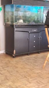 75 gallon fish tank with filter 250.00 or obo