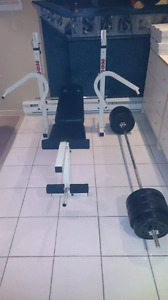 Multipurpose exercise bench with weights