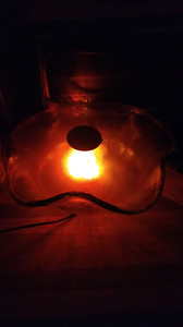 Bowl humidifier with muticoloured lights and steam