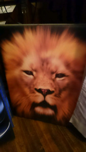 Big Lion Canvas picture