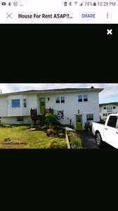 5 Bedroom House For Rent in Salmon Cove