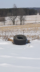 exercise tire. NEED GONE