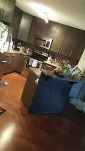 Luxury condo!  Roommate wanted