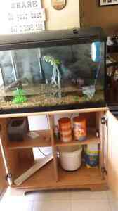Fish Tank 34 gallon