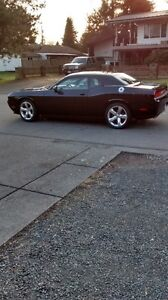 2012 Dodge Challenger Coupe (2 door)