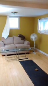 2 BEDROOM ABOVE GROUND APART.(low heating approx.$150.)