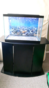 Fish tank (15 gallon), stand and accessories