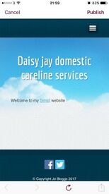 Domestic counsellor