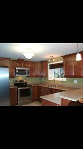 Beautiful 1 Bedroom Apartment (East End/ Airport Heights) St. John's Newfoundland image 1