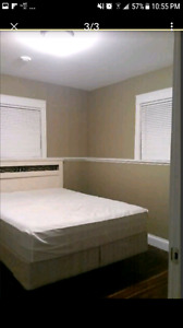 Roommate wanted for September