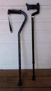 Pair adjustable canes