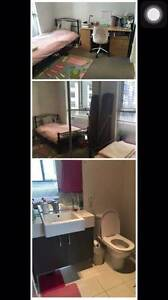 Beautiful Milano apartment!! Cheap cheap master room! Carlton Melbourne City Preview