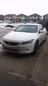 Honda Accord Coupe 2010 Rebuild V6 White