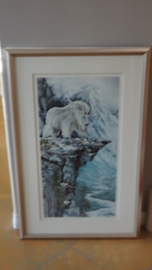 above and beyond framed print by Judi Wild
