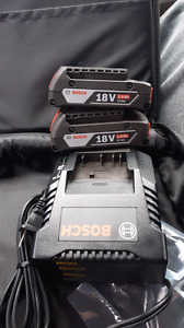 18 V Batteries and charger