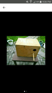 Birds breeding box
