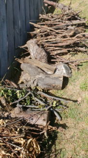 Firewood for pickup Mordialloc Kingston Area Preview