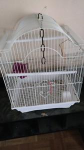 Cage doiseaux