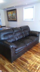 Dark brown couch