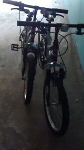Two Youth Mountain bikes - Purple