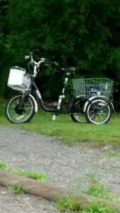 Tricycle électrique de marque Velec