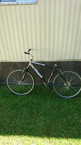 Raleigh 24 speed mountain bike