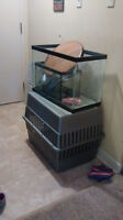 Two fish tanks and a dog crate