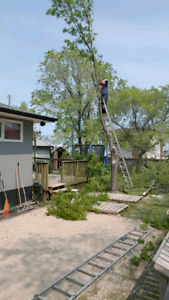 Tree Service and Yard Waste Removal