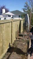 Fence repair and install