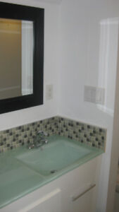 FULLY RENOVATED 1 BDRM/BACHELOR SUITE-UTILITY INCLUDED