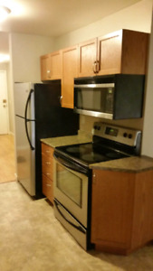 Very nice 2bedroom Apartment in Downtown