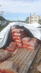 Bags of kindling need gone asap 6 bucks each or 10 for 50