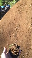 Freshly screened top soil for sale amazing price
